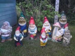 La principal hipótesis es que se trata de un grupo de ladrones que roba viejos enanos de jardín para repintarlos e ingresarlos al mercado negro.