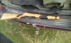 En los allanamientos encontraron una carabina calibre 22