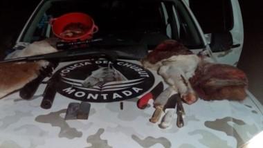La camioneta llevaba guanaco y avestruz faenada y un arma de fuego.