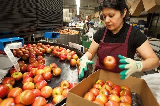 Río Negro criticó a Nación por no incluir frutas en los Precios Esenciales