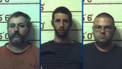 Matthew Brubaker, de 32 años, Terry Wallace, de 41, y Marc Measnikoff, de 34, fueron detenidos en 2018.