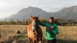 En la chacra de El Hoyo, Sebastián Painequeo se reencontró con sus caballos.