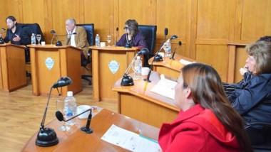 Idea. El Concejo debate cómo reactivar el sector comercial en Trelew.