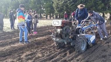 Alumnos del Colegio N° 7719 de Buenos Aires Chico participaron de una jornada de siembra de ajos.