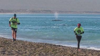 """Los atletas correrán junto a los atractivos del Área Natural Protegida """"El Doradillo"""" de Puerto Madryn."""