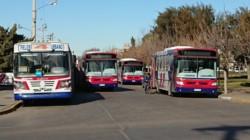 Los colectivos de El 22 parados frente a la Terminal. (Foto: Norman Evans / Jornada)