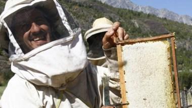 Son 25 los productores apícolas nucleados en la asociación comarcal.
