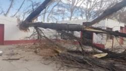 Tremendo viento Zonda en Mendoza. Volaron los techos de un galpón en la zona de San José, Guaymallén.