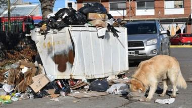 Capital de la mugre. El paro afecta la recolección de residuos en Rawson.