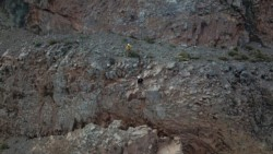 Los trabajos fueron realizados por escaladores expertos en estabilización de taludes de Paramassi Andina.