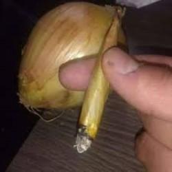 Al quitar la cinta y abrir esas cebollas, encontraron en el centro dos envoltorios negros que contenían marihuana.