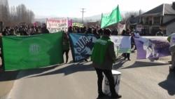 Estatales marcharon por las calles de El Hoyo