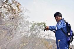 El presidente Evo Morales participó en las tareas de combate al fuego.