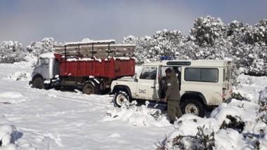 El operativo de Gendarmería Nacional sucedió en el paraje La Veranada, cerca de la estancia La Buitrera.