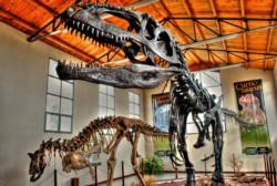 Buscan convertir a Neuquén en la capital argentina de los dinosaurios.