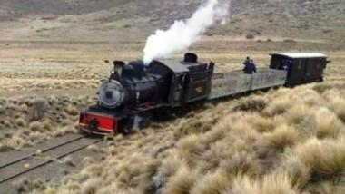 Un grupo de extranjeros vivieron cuatro intensos días a bordo del emblemático tren cordillerano.