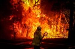 Infierno rojo. Las llamas han consumido una superficie equivalente a la de Costa Rica.