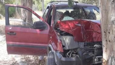 La camioneta Ford Eco Sport con visibles daños tras chocar el árbol.