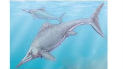 Ilustración de un ictiosaurio. Autor: Dmitry Bogdanov