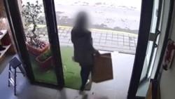 Una mujer entró al establecimiento y se llevó la caja mientras los empleados hacían otras tareas.
