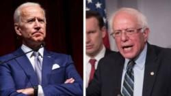 Biden -a la izquierda- fue vice de Barack Obama. Sanders es un dirigente demasiado progresista para el electorado norteamericano.