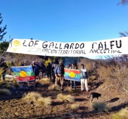 El autodenominado lof Gallardo Calfú en un campo tomado en el paraje El Foyel.