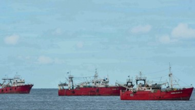 Los pesqueros permanecen en la rada. Los dirigentes señalaron que los protocolos se vieron superados.