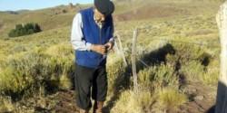 El coronavirus encontró a don Pedro en medio del campo.