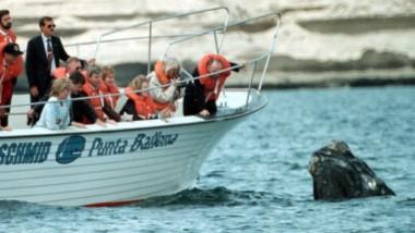 Jorge Schmid, capitán de la lancha en la que Diana Spencer realizó el avistaje de ballenas más visto de la historia.