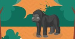 """La funcionaria fue separada de su cargo luego de la polémica que generó la divulgación del cuento infantil """"El gorila Gorilón""""."""