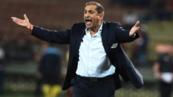 El Pelado tiene todo acordado y se convertirá  en el nuevo entrenador de Botafogo.