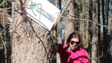 El municipalidad puso carteles para prevenir usurpaciones.