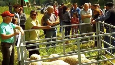 Los pequeños productores se organizan en la cordillera.