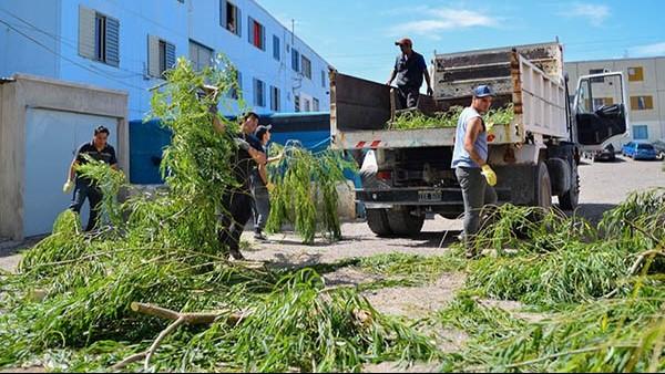 Antenas, árboles, paredones y carteles quedaron destrozados.