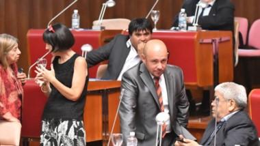 En lo que fue una rápida sesión preparatoria, se eligió a quienes van a ser las autoridades en las vicepresidencias de la Cámara en este período.