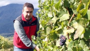 Vinos del sur. Darío González apuesta al desarrollo de las viñas chubutenses.