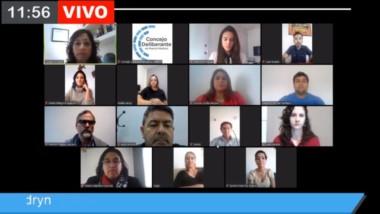 El Concejo de Puerto Madryn hizo su primera sesión virtual.