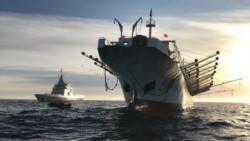 El canciller Solá se pronunció a favor de endurecer las multas para combatir la pesca ilegal.