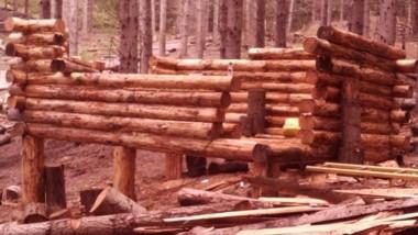 En Lago Puelo se detectó un faltate de lotes de maderas. Hay denuncia.
