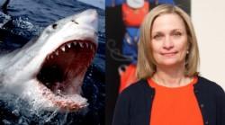 La víctima del gran tiburón fue identificada como Julie Dimperio Holowach, una neoyorquina de 63 años.
