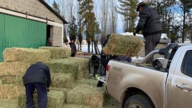 Fardos. También se asisitió a los productores locales, que sufrieron grandes pérdidas por el temporal.