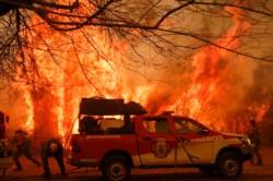 Entre 14 mil y 18 mil hectáreas productivas quedaron consumidas por el avance del fuego.