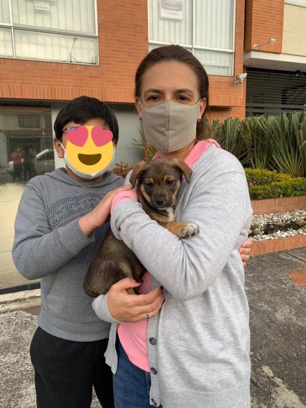 La foto donde se ve al cachorro en los brazos de una mujer y acompañada por un nene.