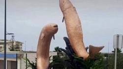 Los vecinos se tomaron de mala manera ver dos estatuas de peces en forma de pene.