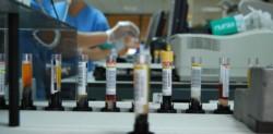 El laboratorio Vector, sede de los trabajados sobre la pandemia.