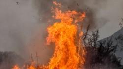 El fotógrafo Charly Soto muestra una figura que parece un diablo, por lo que fue bautizada