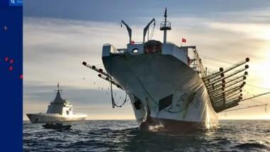 Ciudad flotante. Una imagen satelital del 12 de enero muestra cómo se depreda el Mar Argentino. A la derecha, una de las habituales capturas de un pesquero oriental ilegal.