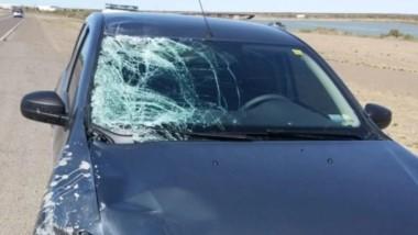 El grave episodio ocurrió este lunes a las 01:50 horas en la Avenida Marcelino González y 26 de Noviembre.