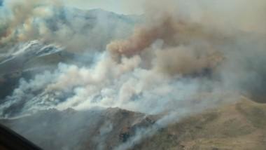 Fuego descontrolado. Durante dos días ardieron 150 hectáreas de pinos.