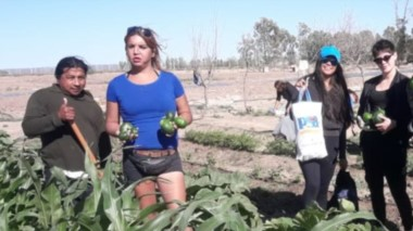 Verónica Tatiana Díaz con miembros de la agrupación que lidera, durante la cosecha de este lunes.